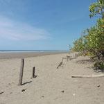 km langer Sandstrand - nur für uns