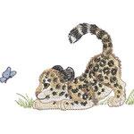 Leopard 01