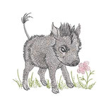 Warzenschwein 01