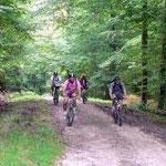 Faites du vélo dans les forêts argonnaises