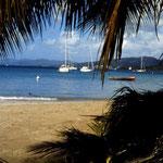 Flottillen Segeln in der Karibik -   Die Bucht Grande Anse d'Arlet auf Martinique