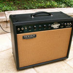 Mesa Boogie Blue Angel1x12