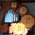 """This 2500 year-old Taiwanese """"Red Cypress"""" was donated by a Taiwan to commemorate the completion of the Hakuho Garan and Kodo Hall reconstruction."""