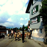 Schweizer Folklore