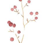 南天 watercolor,paper  25.7×18.2cm