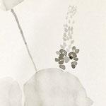 葛 japanese ink,paper  25.7×18.2cm