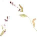 蓼 watercolor,paper 25.7×18.2cm