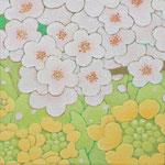 桜始開  oil on japanese paper,panel  15×15cm