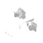 菫 japanese ink,paper