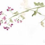 春たわむ watercolor,paper  18.2×25.7cm
