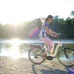 BlueLabel Wave 2016 ebike