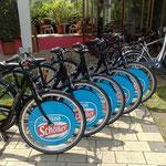 e-Bike Flotte