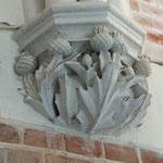 Planta Geneste - die Distel, Wappenblume der Plantagenets