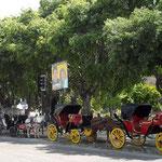 Kutschen an der Plaza von Viña del Mar