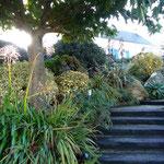 Der Garten - sogar im November noch prachtvoll