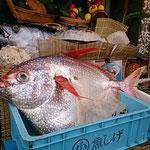 国際通りでみかけた大きなお魚