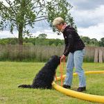 Longieren in der Hundetrainerausbildung