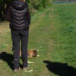 Eigentrail in der Hundetrainerausbildung