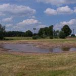 Auf der Nordhälfte der Fläche wurde im Juli 2014 eine neue Senke angelegt.