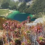 Blick auf den Mac Kenzie See