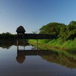 Wasserloch bei der Bayala Game Lodge