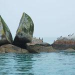 Split Apple Rock zwischen Kaiteriteri und Anchorage
