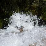 kurz vor den Silicar-Rapid-Springs (Quellen)