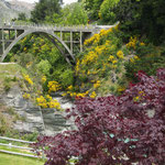 Shotover Jet Beach, Gorge Road, Queenstown