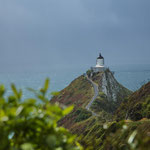 Nugget-Point-Leuchtturm