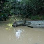 Bachdurchfahrt im Inkwenkwezi Game Reserve
