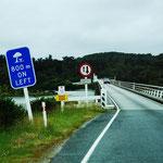 mit 737 Metern die längste einspurige Brücke von Neuseeland