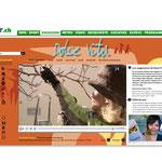 """Radio Télévision Suisse romande / Emission """"Dolce Vita"""". Graphisme du site."""