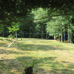 Le terrain de volley-bal