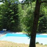 La piscine en contre bas.