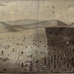 """Im Buch """"Anleitung zum Forstwesen"""" von Johann Andreas Cramers von 1766 ist ein gewerblicher Großkahlhieb dargestellt. Auch für den Frankenwald muss man sich großflächig organisierte Streifenkahlschläge für die Glashüttenhiebe vorstellen."""