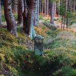 """Ein einmaliges """"Grenz-Ensemble""""  aus Steinen, Wegen und Gräben befindet sich im Waldgebiet Hängeleite an der bayerisch –thüringischen Landesgrenze südlich Lauenhain."""