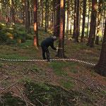 """Im Gelände sind die alten Kohlplatze nur für das geübte Auge zu erkennen. Um sie für Waldarbeiter und Forstmaschinenführer sichtbar zu machen, werden sie im Projekt """"Kulturgüterkartierung Frankenwald"""" mit Farbe und einem gelben """"Meilerzeichen"""" markiert."""