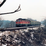 Eine unbekannte 132 mit den Eilzig Berlin nach Aschersleben in den 80er Jahren – Belzig km 64,2