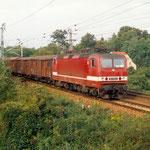 143 101 mit Güterzug nach Seddin an km 65,8 (1993?)
