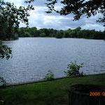 会場の庭に面して大きな池があります。