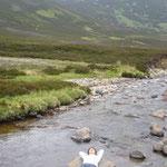 川で寝ている日本人を見つけました。 標高2000メートルを超えています。