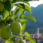 Tuenno (Trentino-Südtirol, Italien)