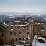 Links die 300 Jahre alte Waldkiefer auf der Burgmauer
