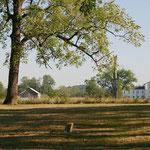 vom alten Friedhof aus gesehen - ein Verein kümmert sich um Wiederaufbau und Erhaltung