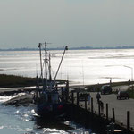 Fischkutterhafen in Wremen