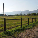 Spiritstoneranch - Weiden