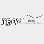 Troy Steine