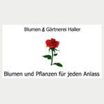 Blumen Haller