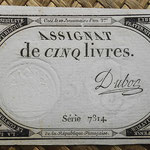 Francia Assignat 5 livres 1793 (60x94mm) pk.A76 uniface