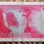 Rodesia 1 pound 1964 reverso